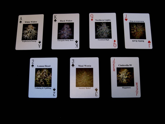 Medical Cannabis Playing Cards