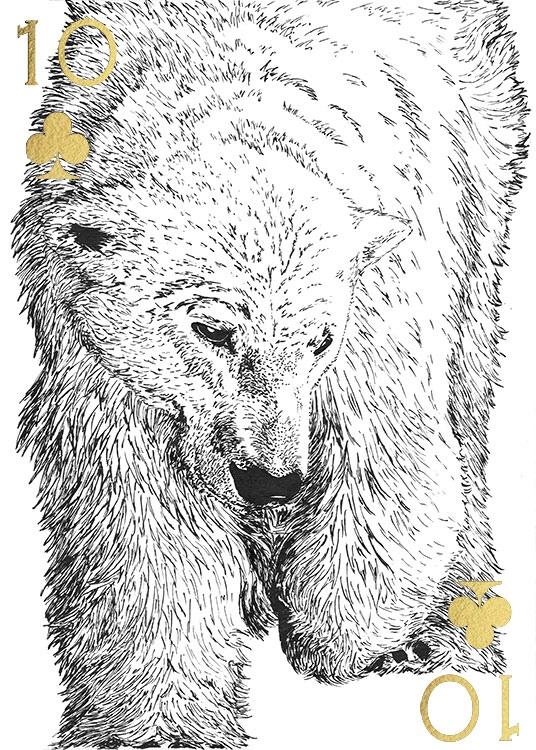 Captive Souls - Polar Bear